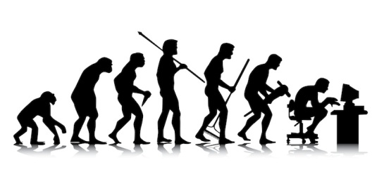 Human – business evolution